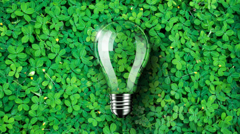 Light bulb is on green grass background, concept idea